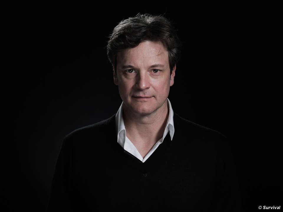 Colin Firth lança campanha para salvar 'a tribo mais ameaçada do mundo'