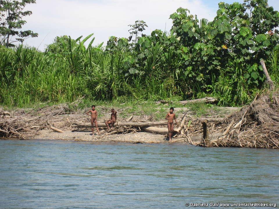 Propagação de 'safaris humanos' ameaça indígenas isolados no Peru