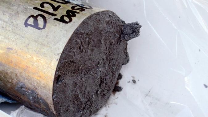 A sediment sample from Little Lake in the Oregon Coast Range.