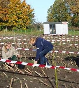 Ineke Barten plant 1e boom - foto John Vermeer