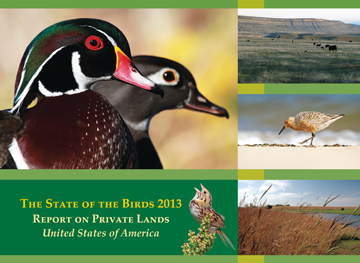 The State of the Birds Report 2013
