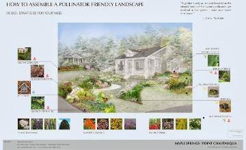 How to assemble pollinator friendly landscape