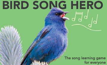 Bird Song Hero - new game for learning bird calls