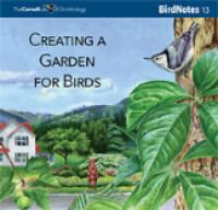 Creating a Garden for Birds