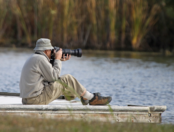 Best nest photography practices