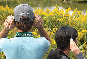 bird watchers listening for songs and calls