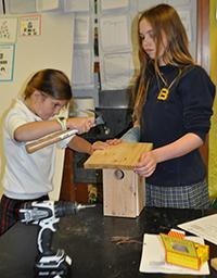 Kids making nest boxes