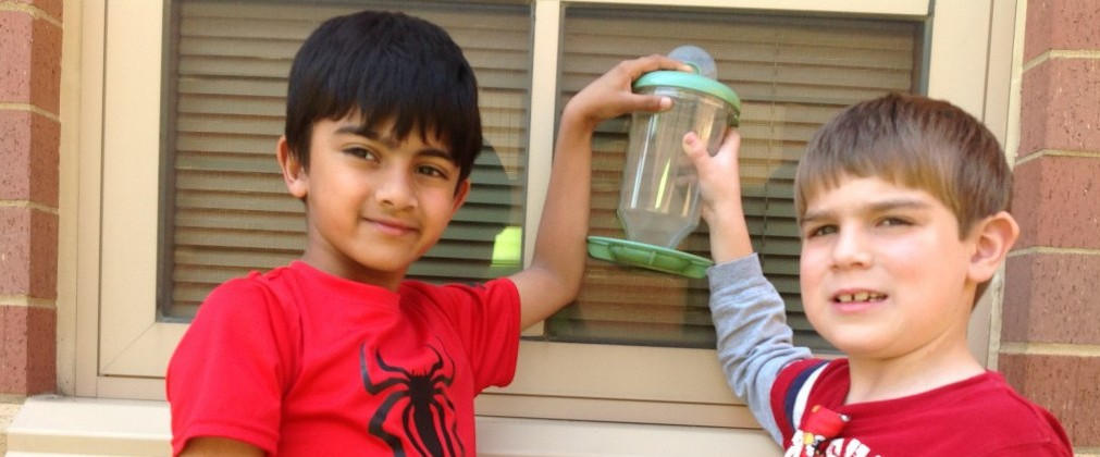 Boys holding bird feeder