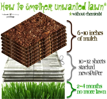 How to smother lawn without using chemicals