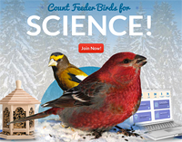Join up for the 27th season of Project FeederWatch