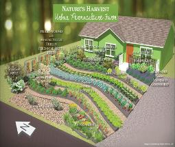case study urban permaculture farm