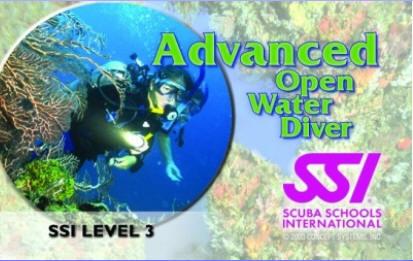 SSI Advanced Card