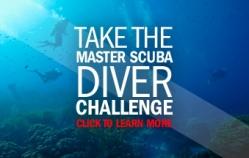 Master Diver Challenge 2011