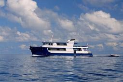 Ocean Rover Liveaboard