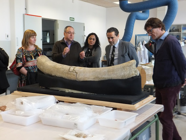 Morocco's Consul in Tarragona visits the IPHES