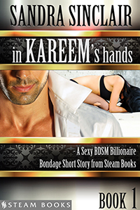 """In Kareem's Hands"" cover"