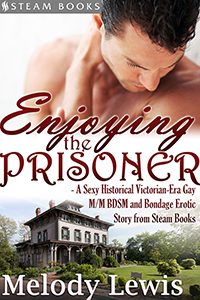 """Enjoying the Prisoner"" cover"