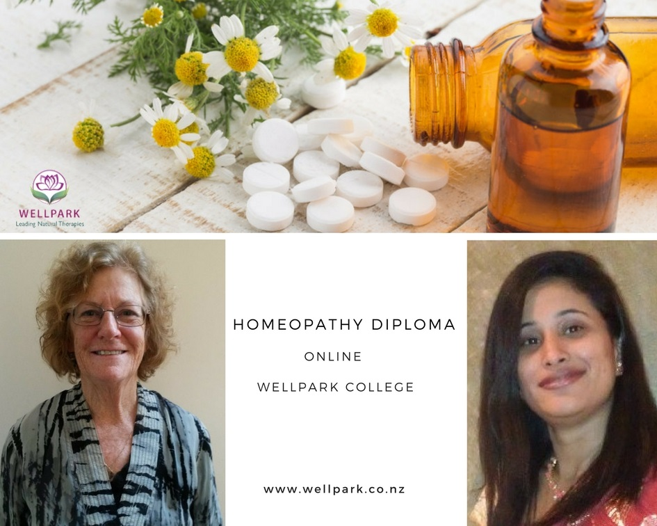 Homeopathy-wellpark-college