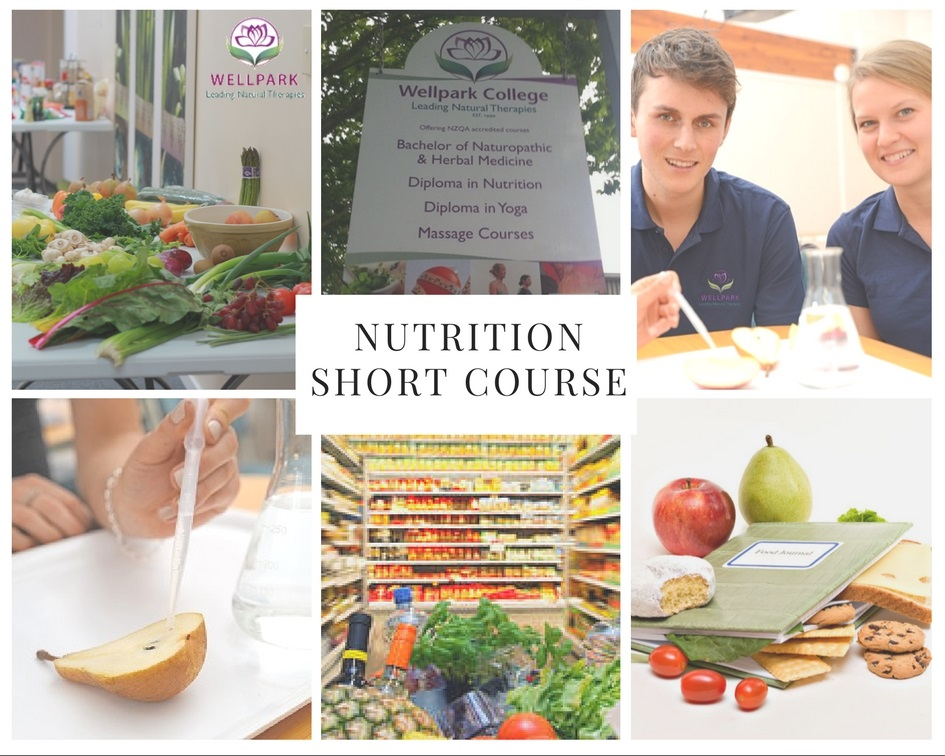 nutrition-short-course-wellpark-college