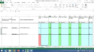 Accessibility experts who know how to use the new self-assessment spreadsheet