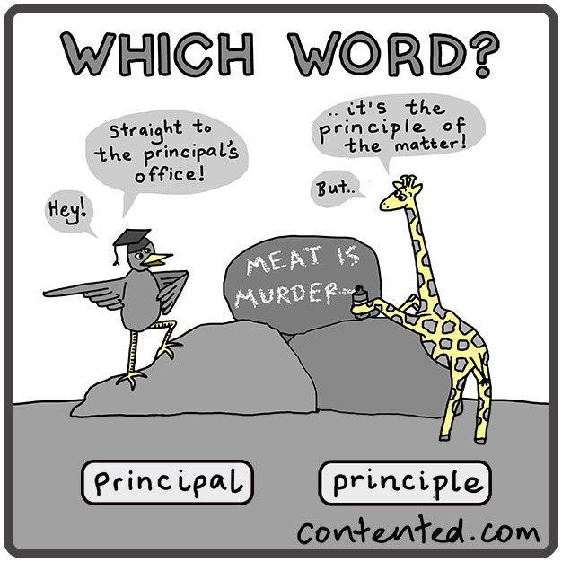 Which word: principle or principal?