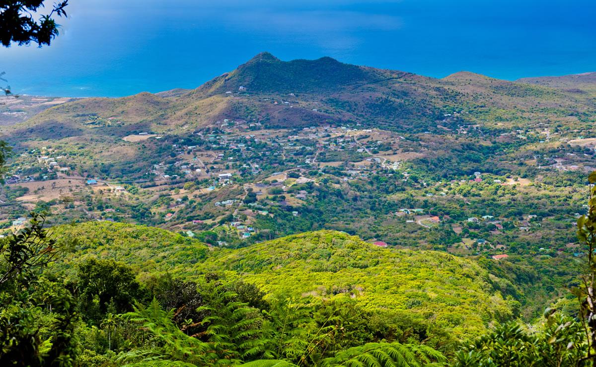 Nevis Naturally