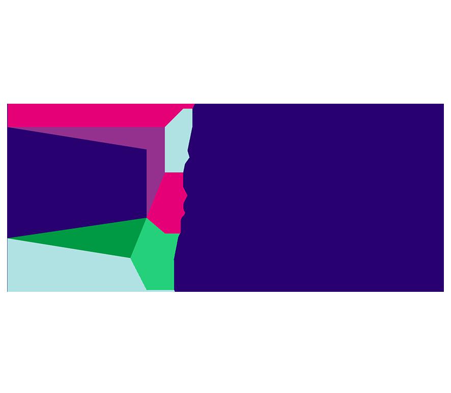 NESA Logo