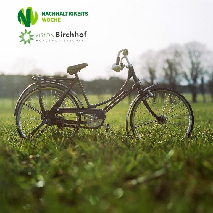 Permakultur-Landwirtschaft Birchhof 2015