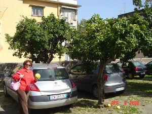 Lee with lemons in Sorrento