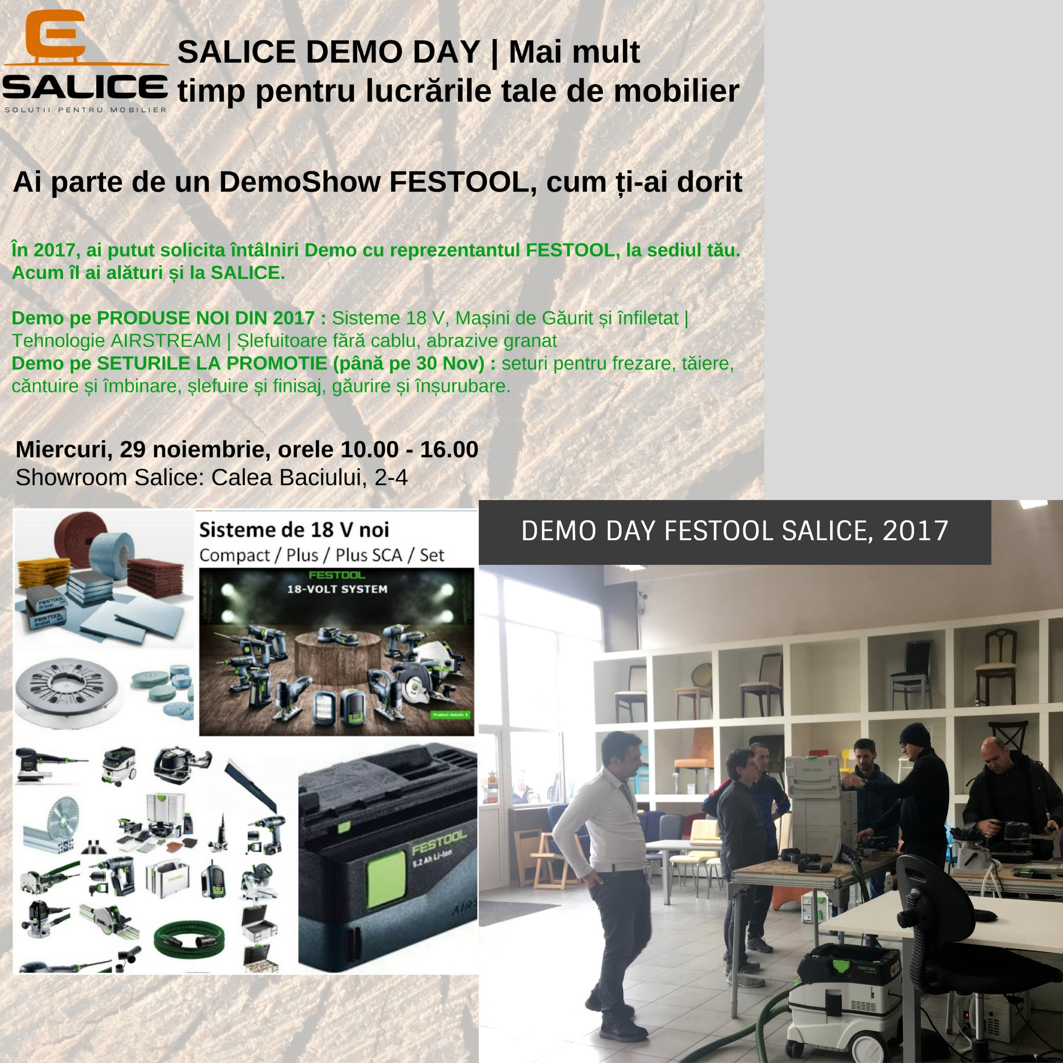 Demo Festool Salice Cluj