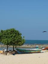 Aan het strand in Sri Lanka