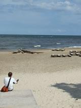Baltische stranden