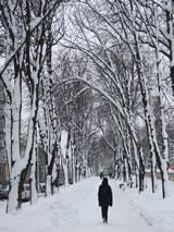 Rusland in de winter