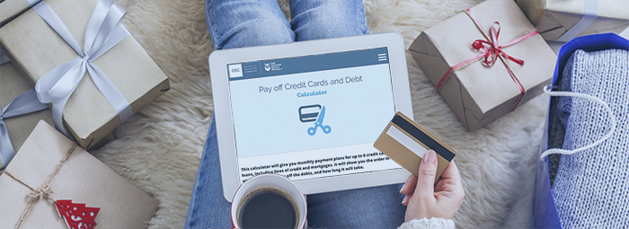 Pay Off Credit Cards and Debt Calculator