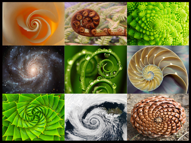 Spiral compilation by www.thealchemyofholism.com