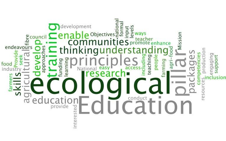 Education pillar wordle