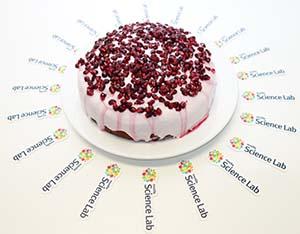Brisbane's Mozilla Global Sprint cake