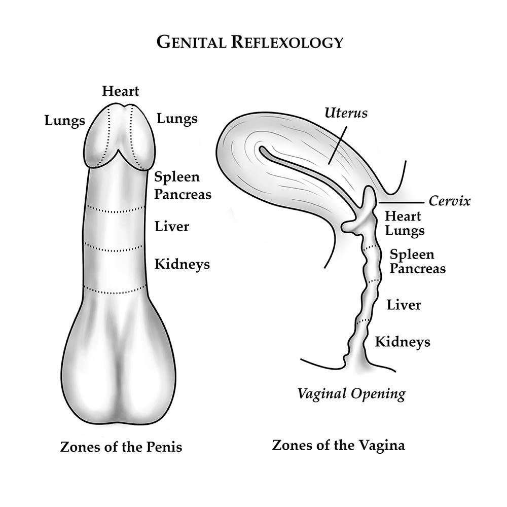 genital massage - Karsai Nei Tsang