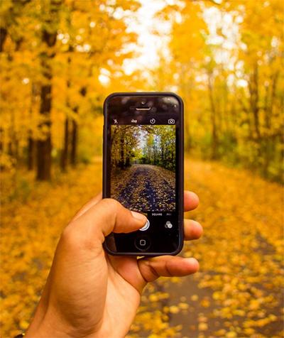 צילום בטבע