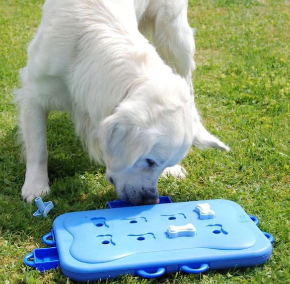 Dog Games Pet Puzzles Interactive Toys