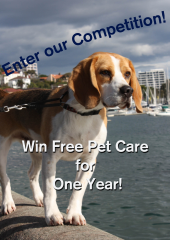 Enter our Competition!