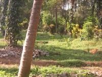 AR farms, Heroor village, Kundapur, Udupi district