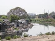 River Cooum