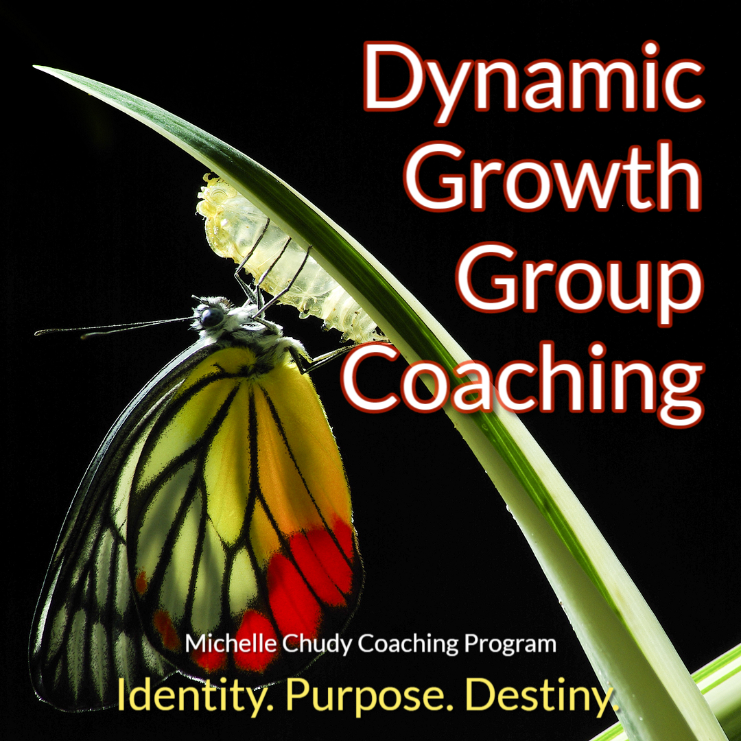 Michelle Chudy Group Coaching Subscription