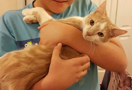 Tarcin adopted from PAWS