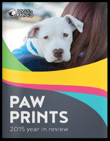 PAW Prints 2015 Year in Review
