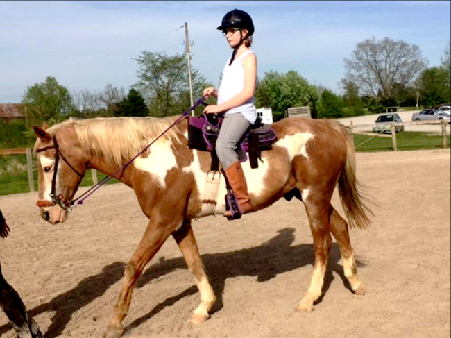 Equestrian Club 1