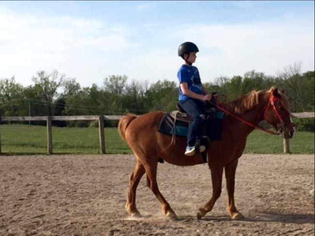Equestrian Club 2
