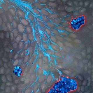 Zinc-loving chemical compound helps deliver drugs that trigger insulin-producing cells in the pancreas