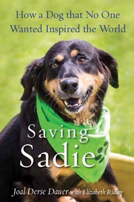 Sadie Fall Update - August 2016